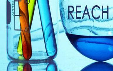 REACH检测报告办理流程!